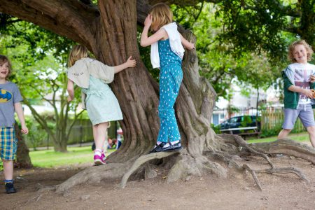 rhodes-avenue-photo-ks1-outdoors-children-playing-around-a-tree